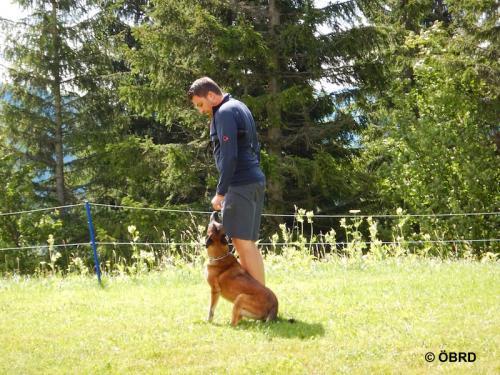 2016-07-15 10-23-50-obrd-hundes taffel-sommerkurs-veitsch-s