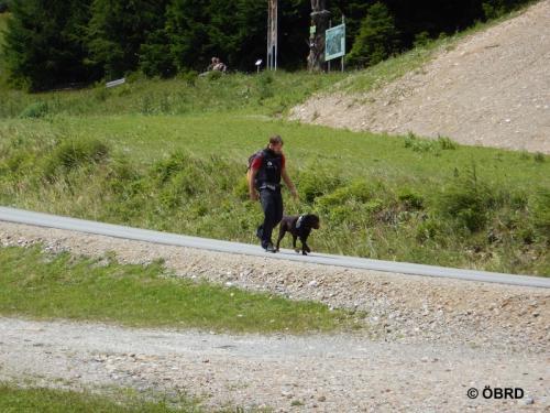 2016-07-15 12-33-14-obrd-hundes taffel-sommerkurs-veitsch-s