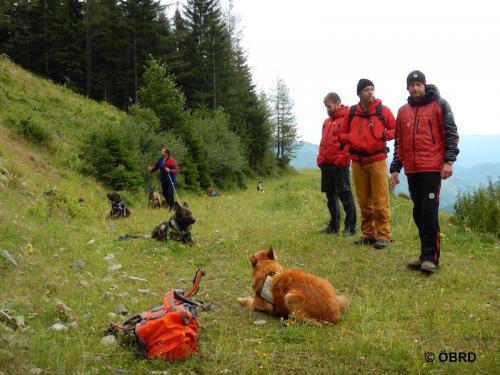 2016-07-16 12-50-34-obrd-hundes taffel-sommerkurs-veitsch-s